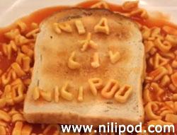 Plate of alphabetti spaghetti on toast