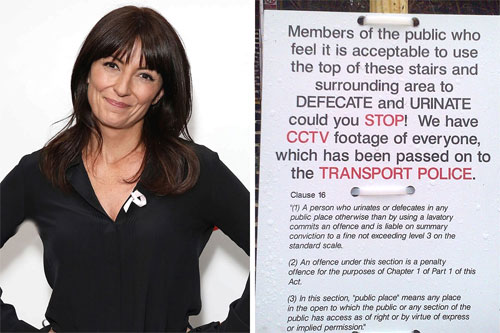 Picture of Davina McCall and her toilet sign