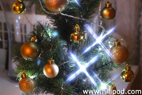 Picture of Christmas tree with star filter on fairy lights