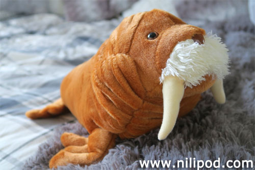 Photo of Mr Tusk walrus toy