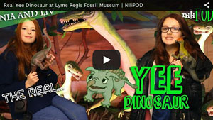Singing with the Real Yee Dinosaur, at Lyme Regis Fossil Museum